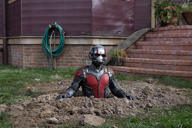 AntMan-grounded