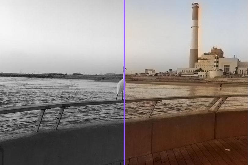 המרת תמונות משחור-לבן לצבע באמצעות אלגוריתם ראייה ממוחשבת (תמונה: גאדג'טי, עיבוד: Algorithmia)