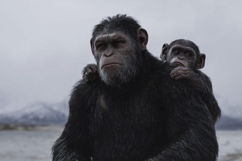 """מתוך """"כוכב הקופים: מלחמה"""" (תמונה באדיבות פורום פילם)"""