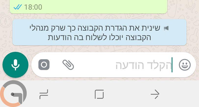אפשרות Send Messages ב-Whatsapp לאנדרואיד (תמונה: רונן מנדזיצקי)