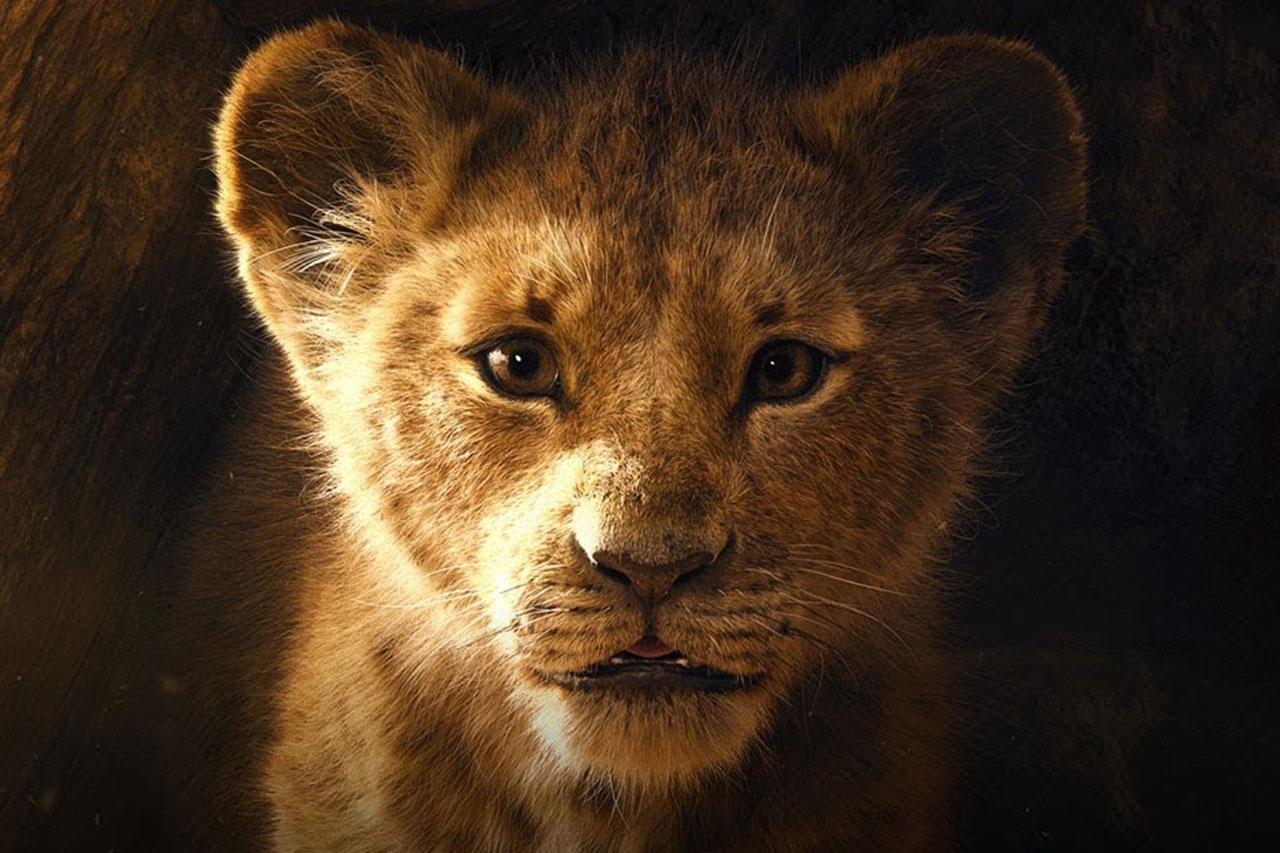 מלך האריות 2019 (תמונה: Disney)