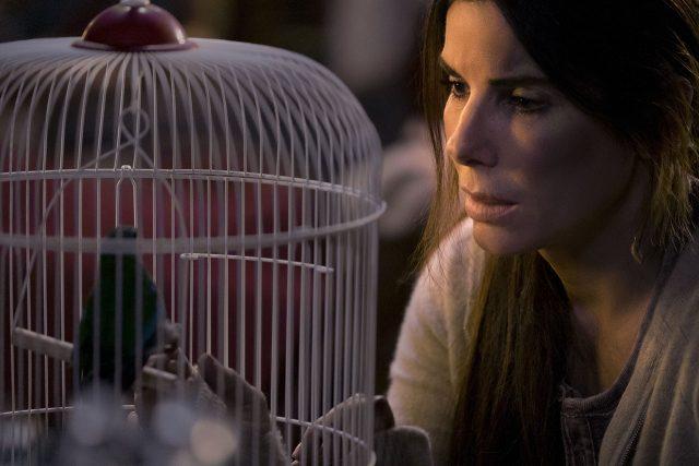 ביקורת סרט: קופסת הציפורים – אם תעצמו את העיניים, הסרט הרע לא יגע בכם