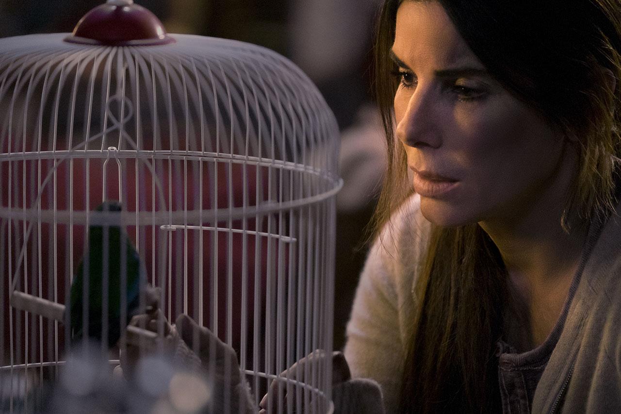 """סנדרה בולוק מתוך """"קופסת הציפורים"""" (צילום: Merrick Morton, תמונה באדיבות נטפליקס)"""