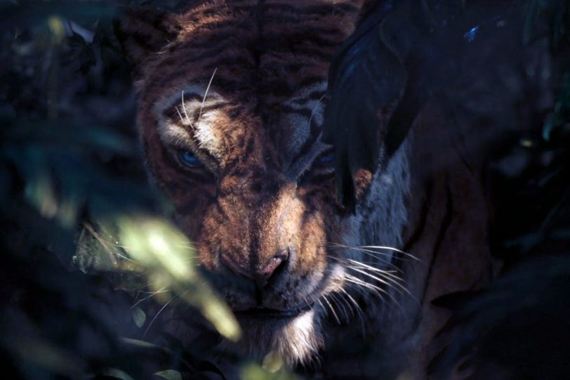 """מתוך """"מוגלי, אגדת הג'ונגל"""" (תמונה באדיבות נטפליקס)"""