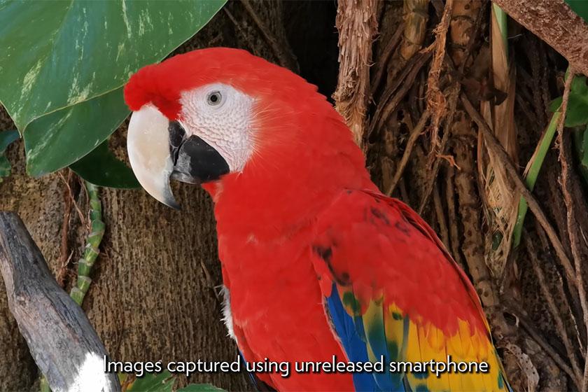 הדגמה לזום בסמארטפון שיוכרז בקרוב (תמונה: Youtube/Parker Walbeck)