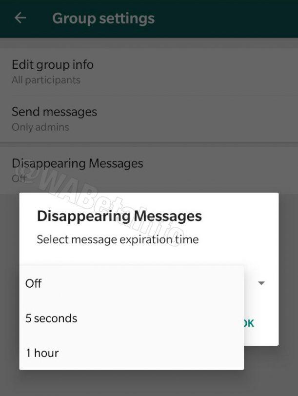 הודעות נעלמות ב-WhatsApp (תמונה: wabetainfo)