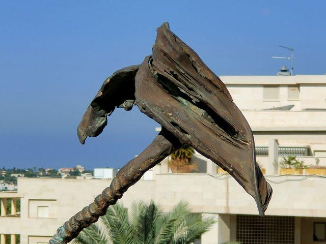 זום אופטי (צילום: רונן מנדזיצקי)