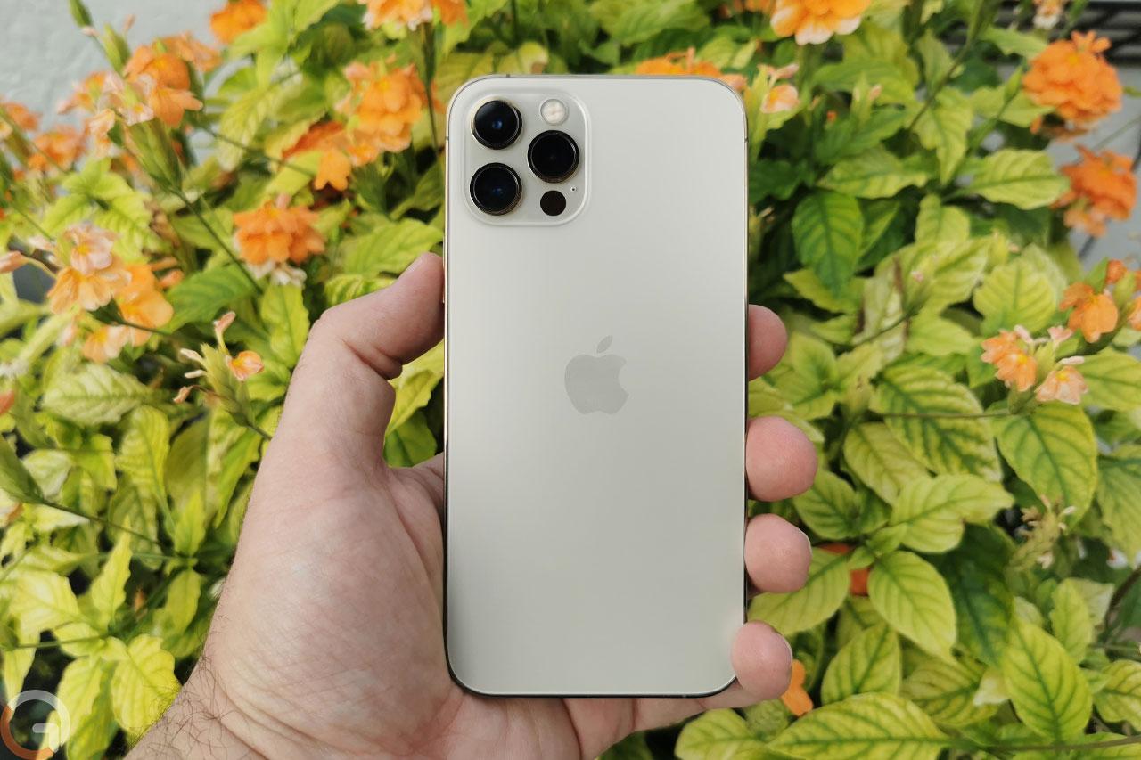 אייפון 12 פרו (צילום: רונן מנדזיצקי)