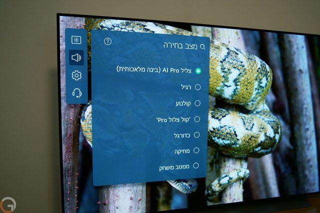 WebOS 6 (צילום: רונן מנדזיצקי)